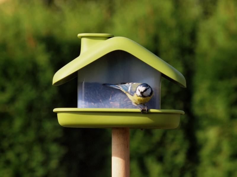 Neu: Vogelfutterhäuschen