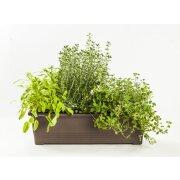 Blumenkasten / Pflanzkasten Bergamot  mit Wasserspeicher 60 cm braun