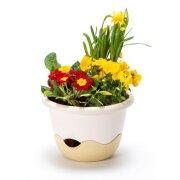 Blumenampel MARETA mit Wasserspeicher 30 cm Elfenbein hell / dunkel