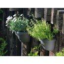 Wandampel / Wandgefäß / Wandblumentopf / Blumenkasten mit Wasserspeicher Anthrazit